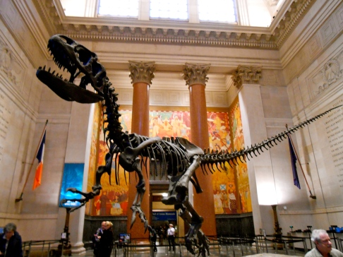 Natural History Museum, NYC
